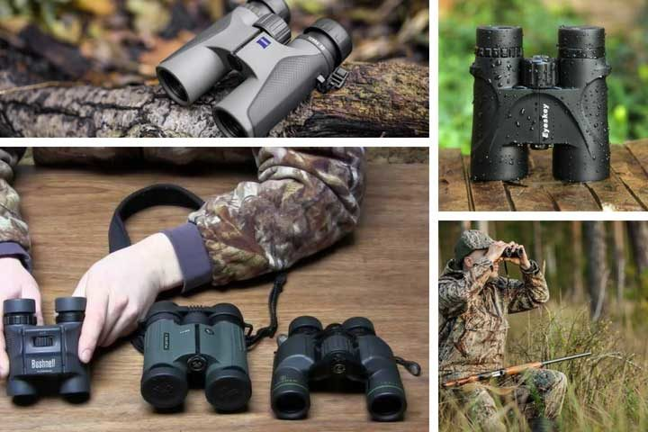 Best Hunting Binocular Review and Buying Guide