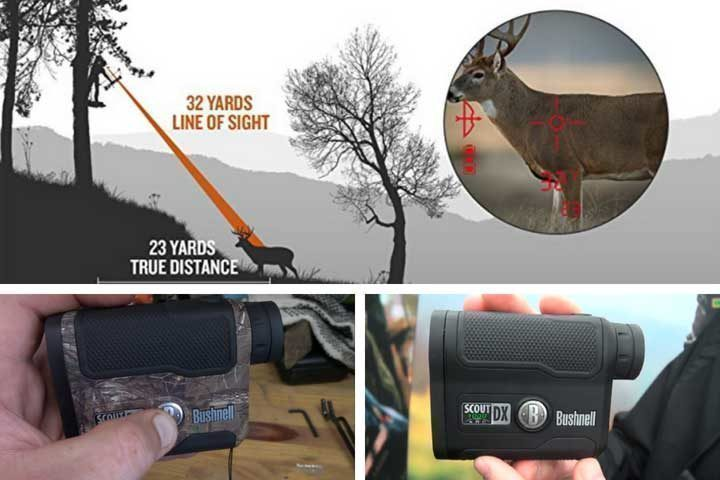 Bushnell Scout DX Review and Rating